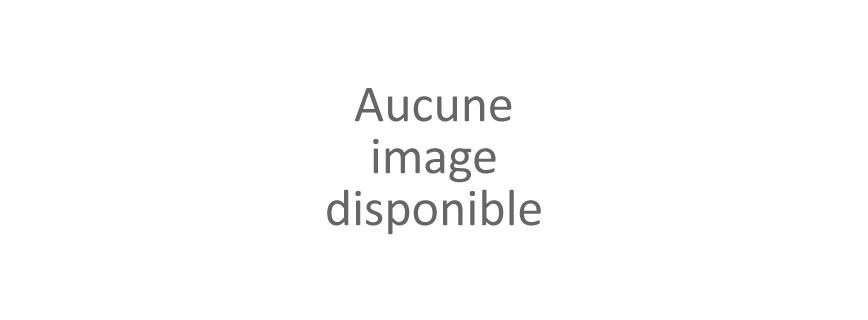 MATRAQUE ELECTRIQUE / TASER